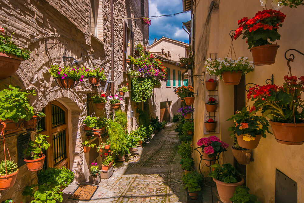 Italy - street with flowers